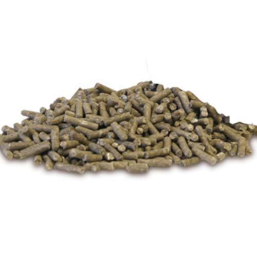 EQUIPUR – zink forte – 1000g Pallets - 3